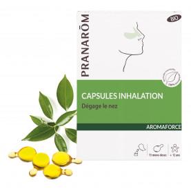 Capsules inhalation - mono-doses | Inula