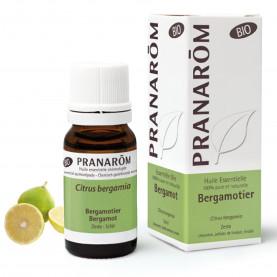 Bergamotier - 10 ml   Inula