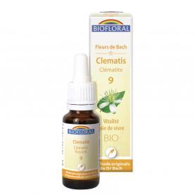 09 -Clematis - Clématite - 20 ml | Inula