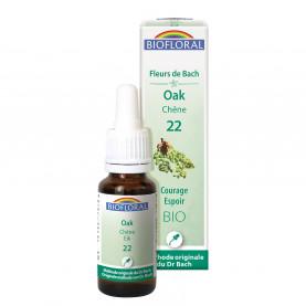 22 - Oak - Chêne - 20 ml | Inula