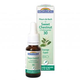 30 - Sweet chestnut - Châtaignier - 20 ml | Inula