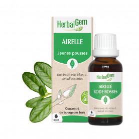 AIRELLE - 15 ml   Inula