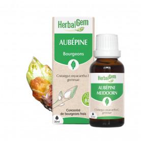 AUBÉPINE - 15 ml   Inula