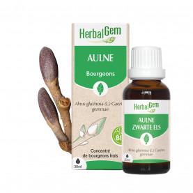 AULNE - 50 ml   Inula