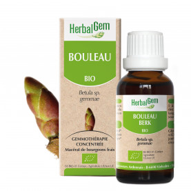 BOULEAU - 50 ml   Inula